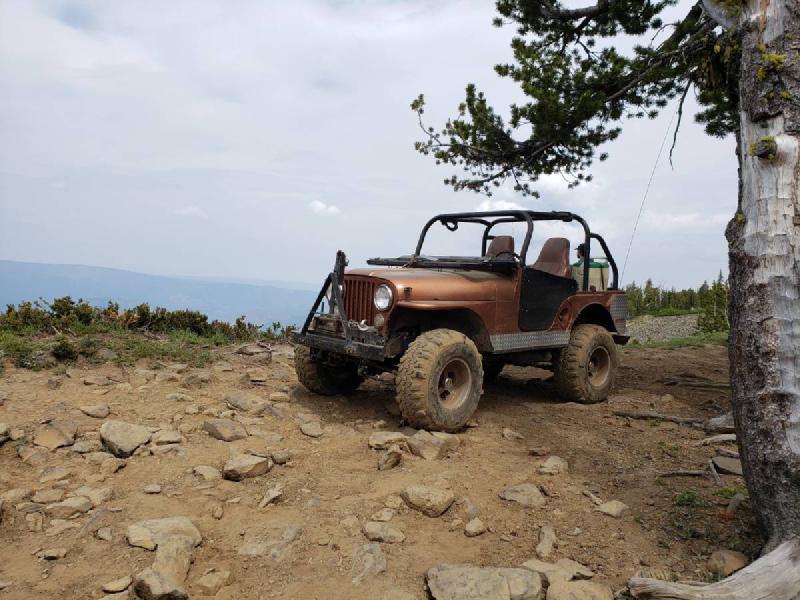 1971 Jeep CJ5, EFI V6, SM420, FF D44s, Detroits, PTO winch For Sale - 1